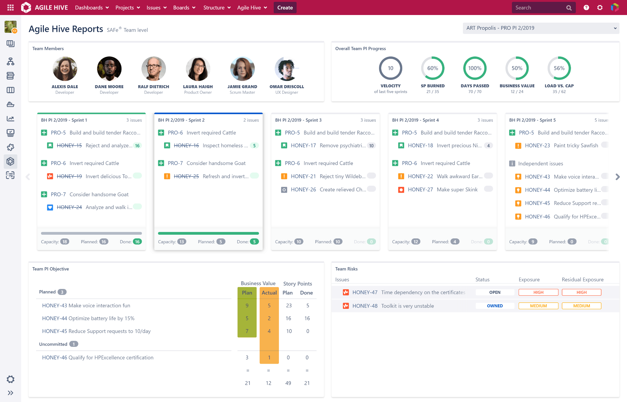 Agile Hive Team Report